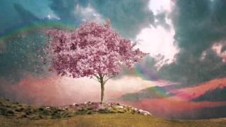 Tori Amos - Snow Cherries From France (Lyrics) HD