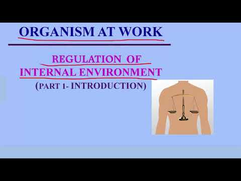 Regulation of the Internal Environment - Part 1 (Introduction)