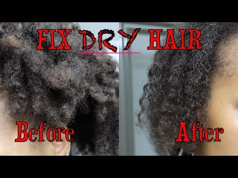 How to: Fix Dry Hair