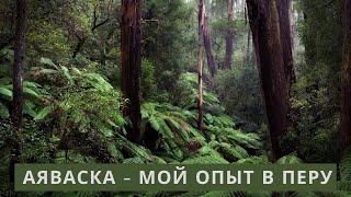 Аяваска центр Блю Морфо Перу Икитос Шаманизм - отзыв Ayahuasca Айяуаска Айваска