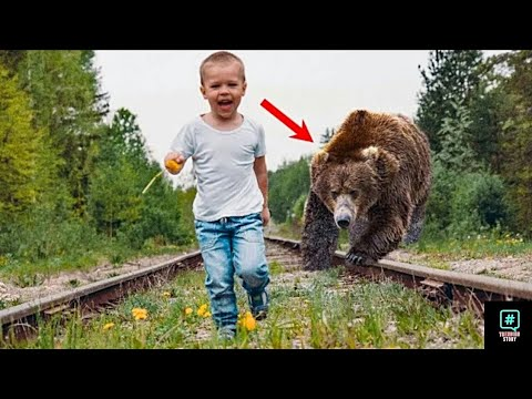 The father threw his son in the rails but what the bear did was amazing