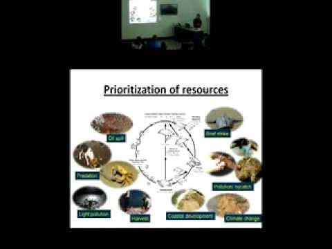 Mariana Fuentes - Prioritising multiple management actions for marine turtle conservation