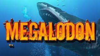 Animal of the week - Megalodon