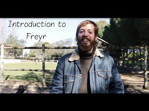 Introduction to: The God Freyr