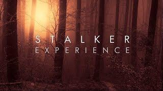 Red Forest | Dark Ambient Mix