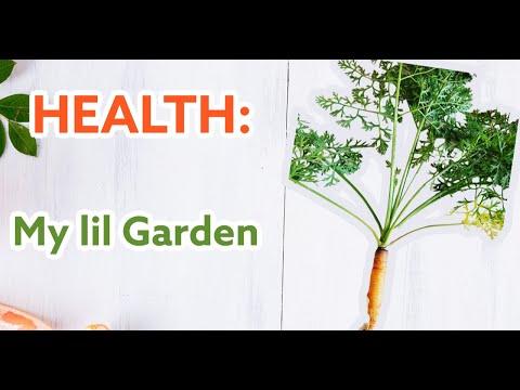 Health//My lil garden