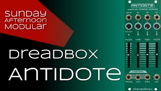 Dreadbox Antidote Introduction (and drums through external input)