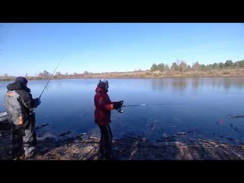 рыболовные базы на реке припять