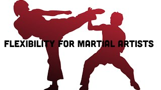 10 Minutes Beginner Flexibility For Martial Artists
