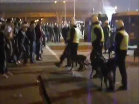Dutch Hooligan and police dogs in Holland Rotterdam