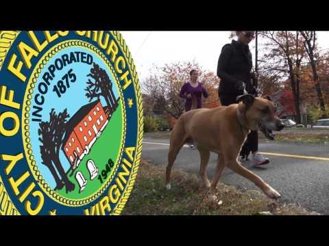 W & OD Trail Safety