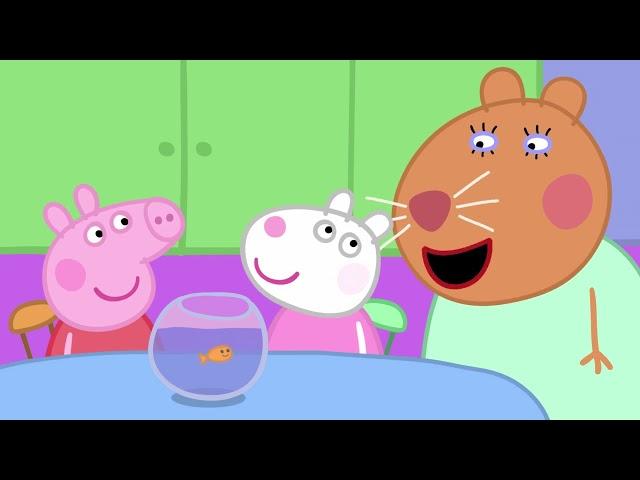 Peppa Pig 粉红猪小妹 第五季21【寵物競賽】中文版