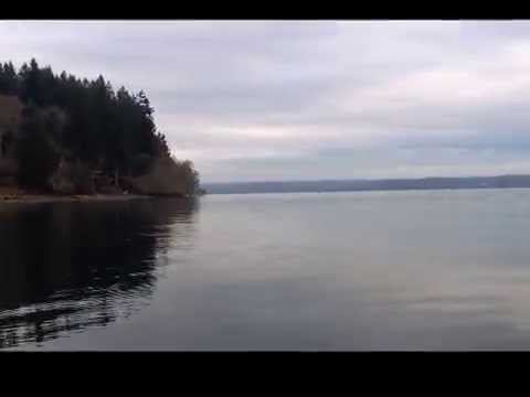 Thumbnail: Baby Orcas come to check out small rowboat (It was really scary)