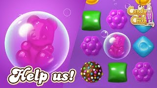 Candy Crush Soda Saga: Free the Candy Bears!