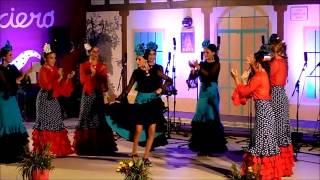 Оригинальное движение в танце фламенко, Алаурин де ла Торре, Испания, 25 июля 2015 г
