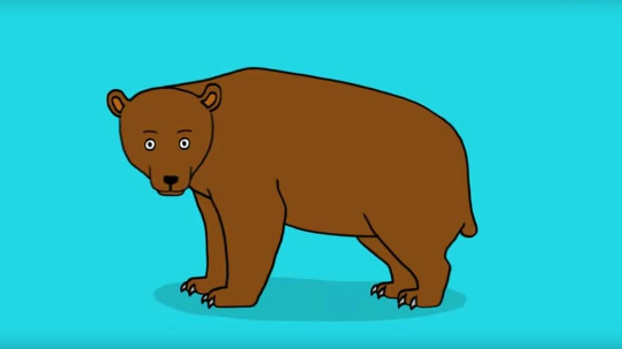 Apprendre a dessiner un ours youtube - Dessin d un ours ...