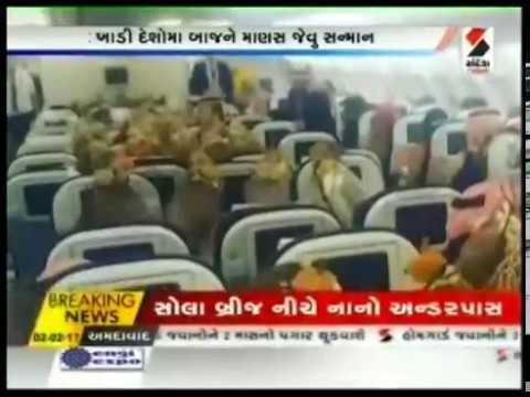 Saudi prince buys airplane seats to transport 80 falcons ॥ Sandesh News