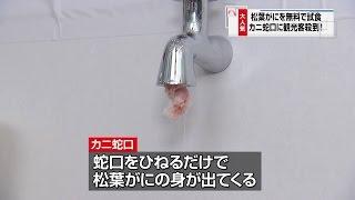 カニニュース「カニ蛇口」(鳥取カニ動画)