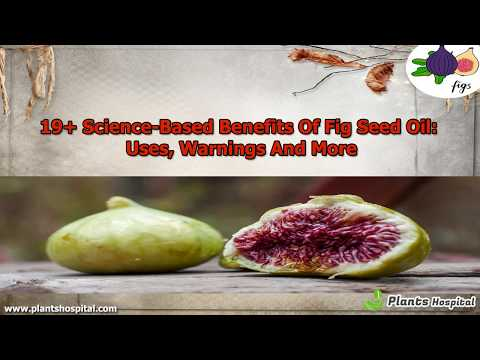 19+ Science-Based Benefits Of Fig Seed Oil: Uses, Warnings And More
