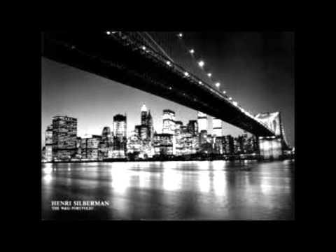 One night in new york city
