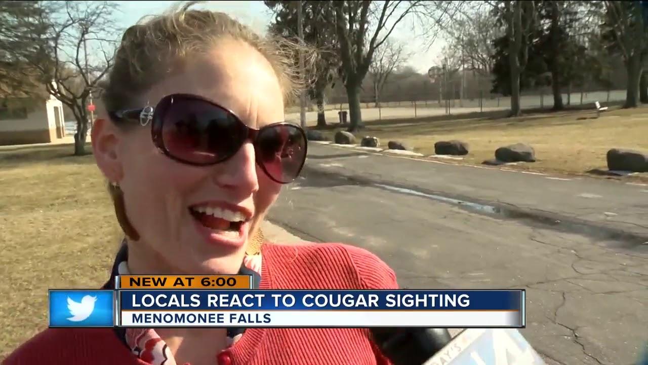 Cougar selfie pics