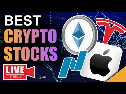 SECRET Bitcoin Data REVEALED (Top 25 Stocks In Crypto)