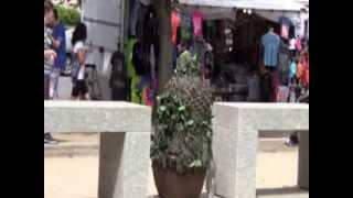 Bushman In D.C.  PART 9  12th & Constitution Ave ) August 10, 2013
