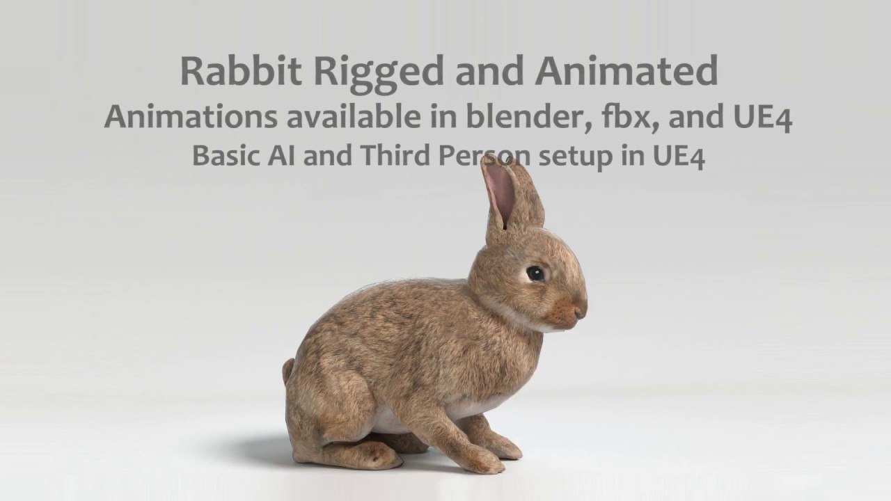 Animated Game Rabbit – UE4 and Blender | Toon Life Studios