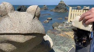旅猫リポート 梅と伊勢編②  -梅の願い事は何?- Traveling cat report. Ragamuffin.