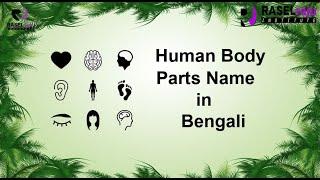 Human Body Parts Name - Learn Bengali Through English