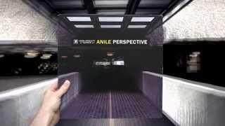 Anile - Not The Way To Run (feat. Taelimb & Tiffani Juno)