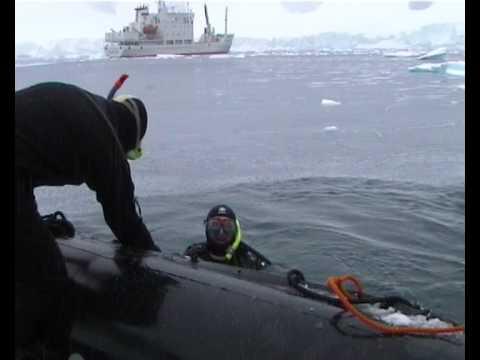 Antarctica snorkel