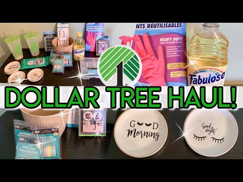 DOLLAR TREE HAUL | NEW FINDS MAY 2019