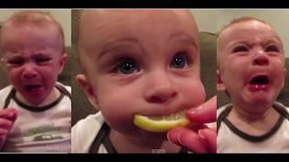 Baby Lemon expression image