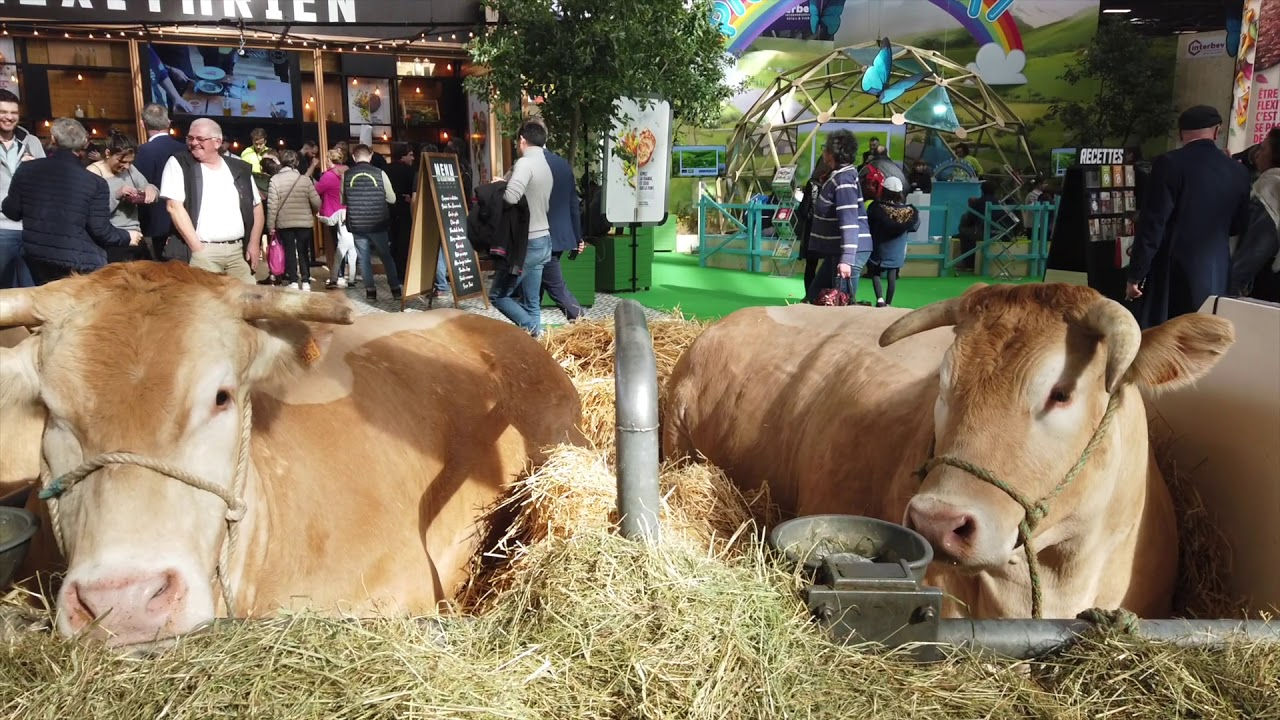 Salon De Lagriculture Paris