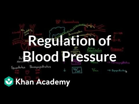 Regulation of blood pressure with baroreceptors | NCLEX-RN | Khan Academy