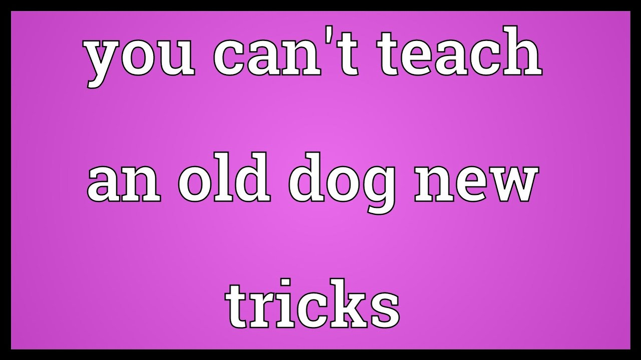 You can't teach an old dog new tricks - Idioms by The Free ...