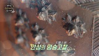 [경기도 문화유산을 찾아서] #10편. 안성의 명승고찰