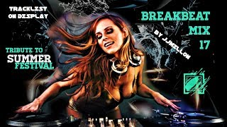 Summer Festival 2019. Breakbeat Mix 17
