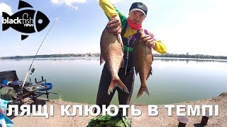 Ловля ляща в темпі на Тернопільському озері