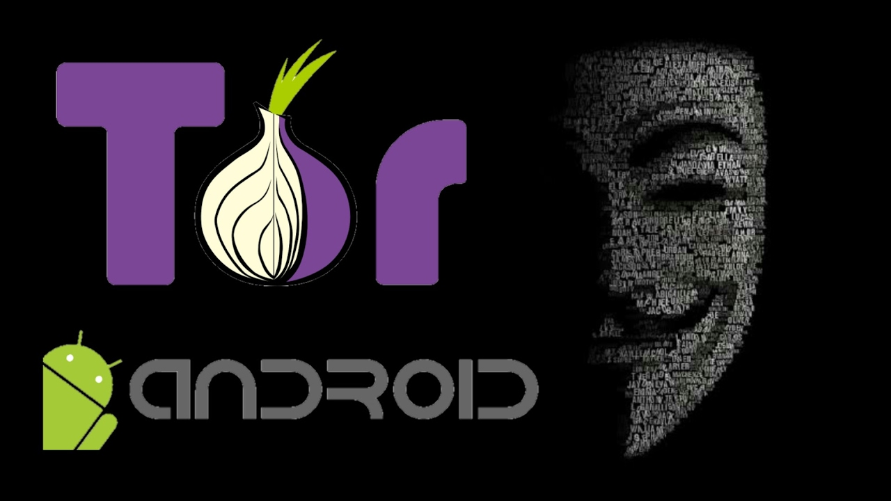 Tor browser play video гирда tor browser linux debian hidra