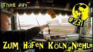 Zum Hafen Köln Niehl  / Truck diary / ExpoTrans / Lkw Doku #231