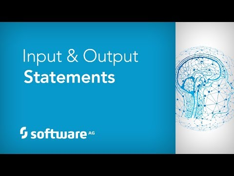 Input & Output Statements