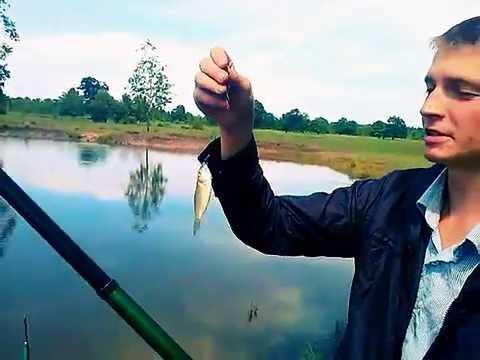 Видео - приколы и курьезы на рыбалке