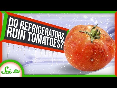 Why You Should Never Put Tomatoes in the Fridge!