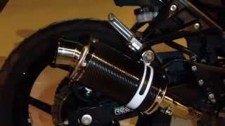 "Delkevic carbon fiber 9"" include silencer"
