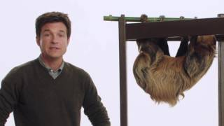 Jason Bateman + Melon the Sloth = #Slothursday!