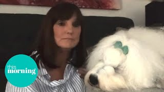The Dulux Dog is at Risk of Dying Out | This Morning