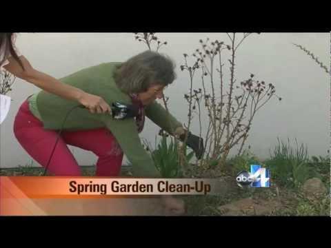 Spring Garden Clean-Up Salt Lake City Utah