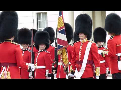 Inspection of the Grenadier  Guards